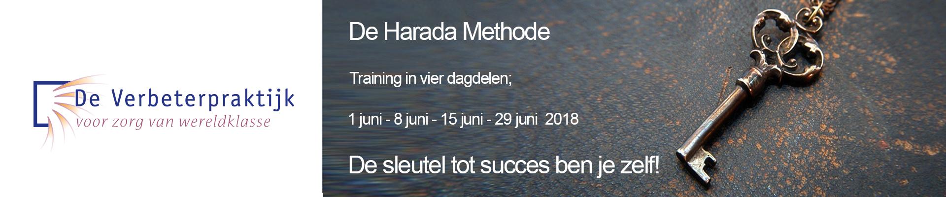 Harada training juni 2018