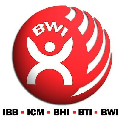 BWI Innovative Unionism Conference for Pan-Europe: Union Power in Workplaces and Beyond