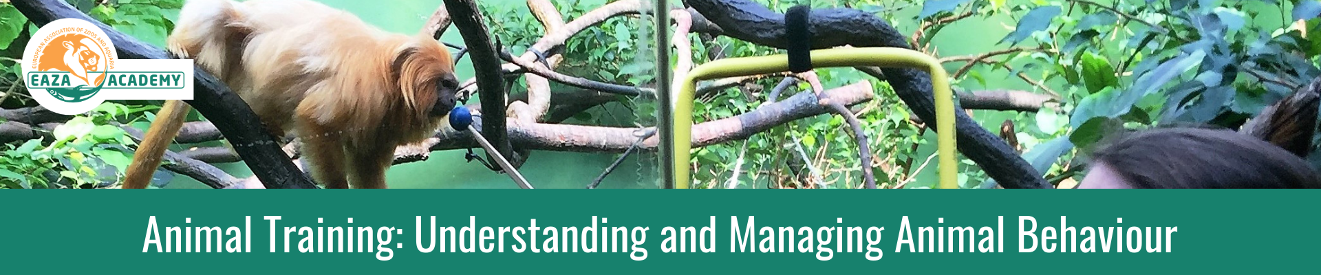 Animal Training: Understanding and Managing Animal Behaviour