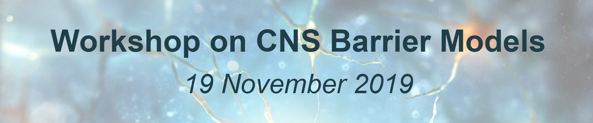 Workshop on CNS barrier models