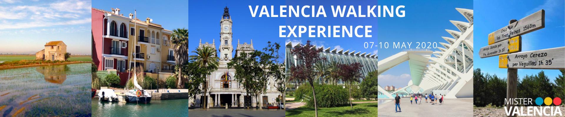 Valencia Walking Experience