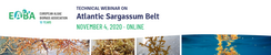 Webinar Atlantic Sargassum Belt