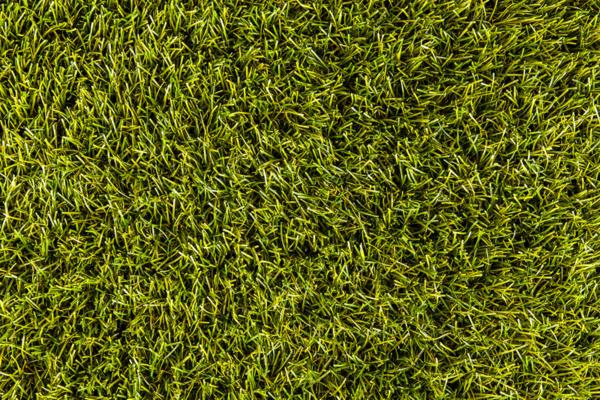 Voetbalschool NL academie's 2020 evenement