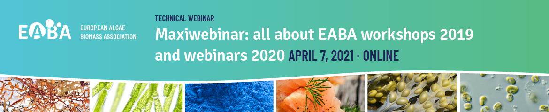Maxiwebinar: all about EABA workshops 2019 and webinars 2020