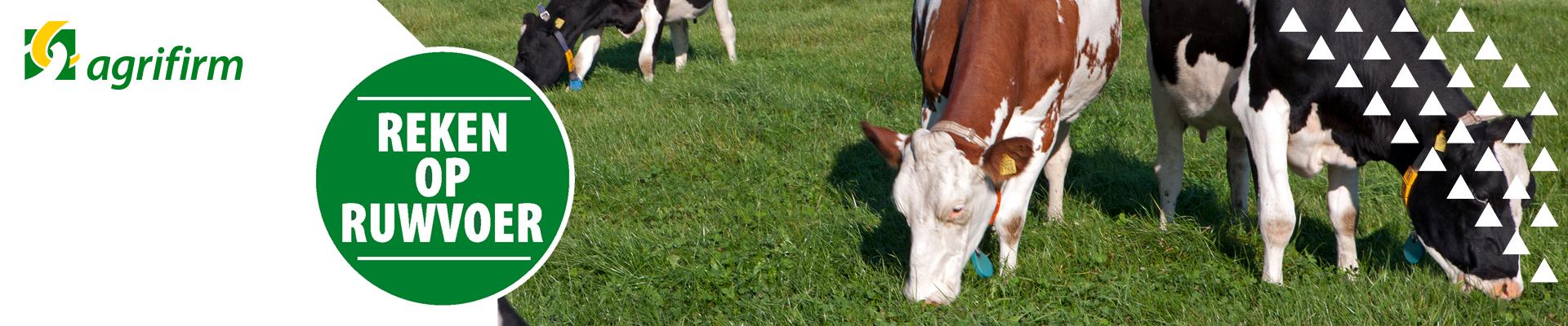 Webinar Meer melk uit Ruwvoer