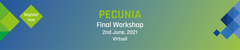 PECUNIA Virtual Final Workshop: Assessing the costs and outcomes of healthcare for economic evaluations in Europe