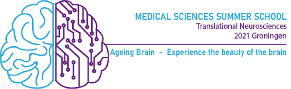 Summer School Ageing Brain